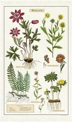 Geschirrtuch:Herbarium_Cavallini