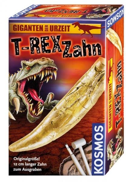Ausgrabungsset T-Rex Zahn