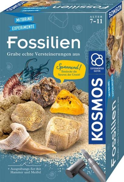 Fossilien Ausgrabungs-Set