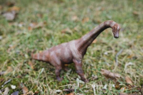 Brachiosaurus Braun Schleich