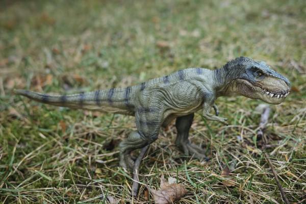 Tyrannosaurus Rex Schleich