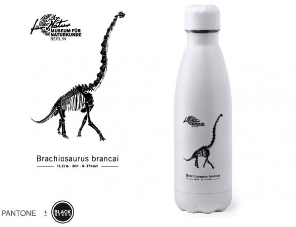 Trinkflasche Edelstahl Brachiosaurus Skelett