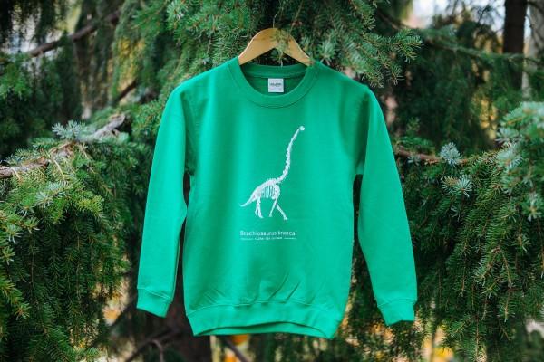 Sweatshirt Dinosaurier Brachiosaurus Kinder grün