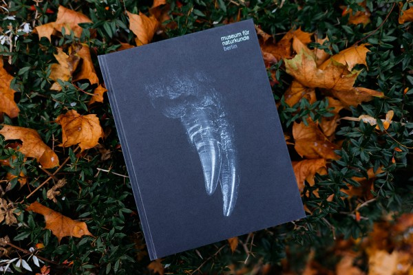 Berlin zeigt Zähne Beigleitbuch