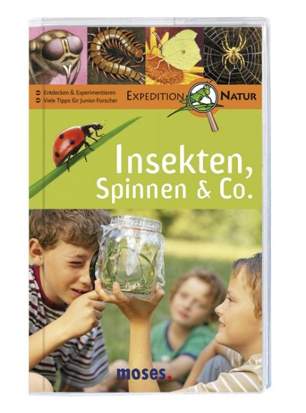 Insekten, Spinnen & Co.