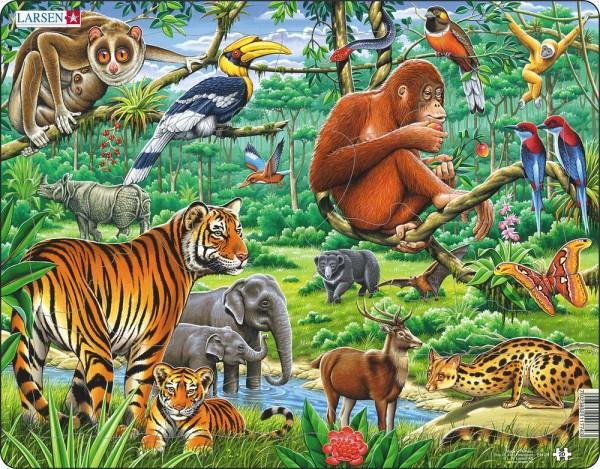 Puzzle Dschungel von Larsen