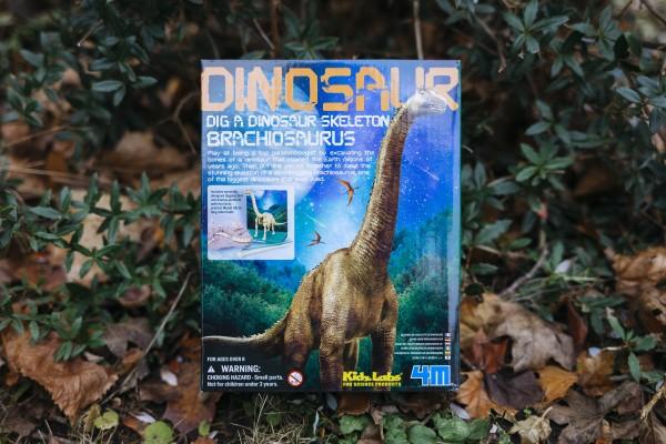 Ausgrabungset Brachiosaurus 4M