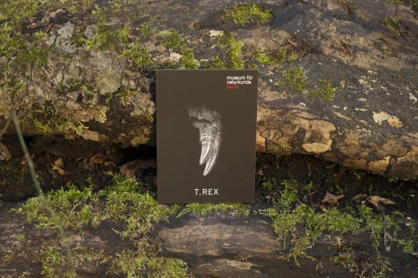 Postkarte Ausstellungsmotiv Berlin zeigt Zähne