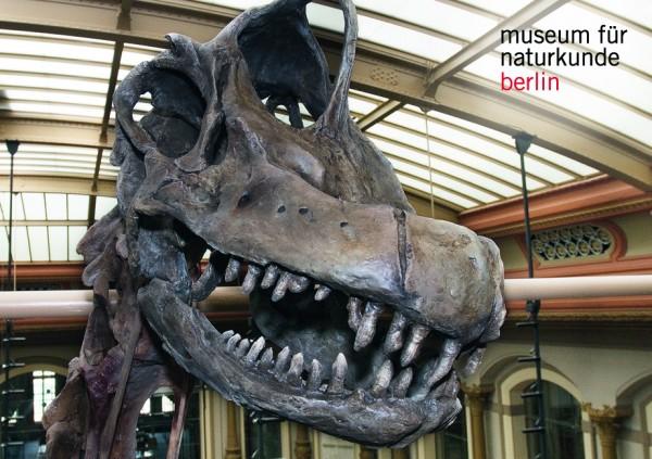 Magnet Brachiosaurus Kopf