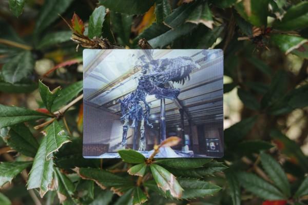 3D Postkarte große Saalansicht mit Vitrine