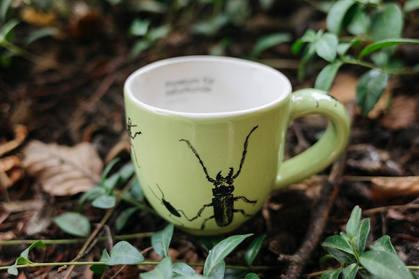 Kindertasse Käfer grün