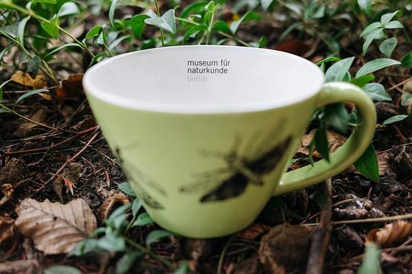 Tasse Schmetterling grün